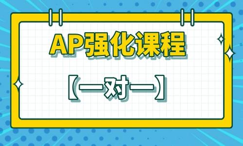 秋季班 | AP强化课程【一对一】